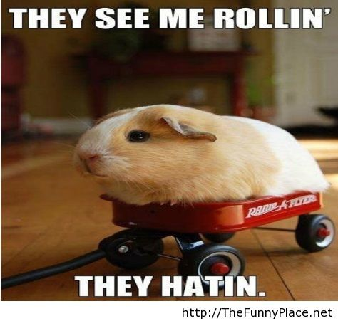 They see me rollin dude