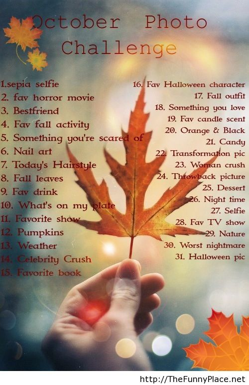To do list october 2013