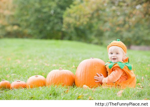 Today is Halloween, have fun with the funny place net