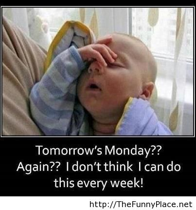 Tomorrow is monday again funny image