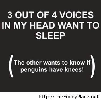 Voice In My Head Funny Sayings