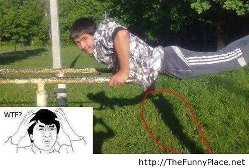 WTF funny picture