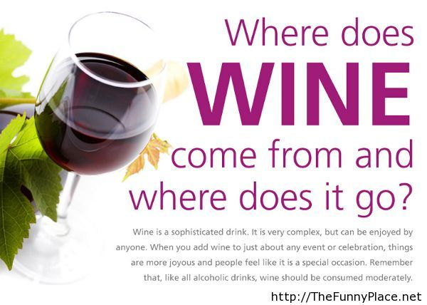 Where does wine come from