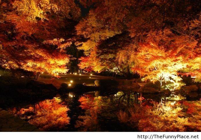 Why I love autumn nights