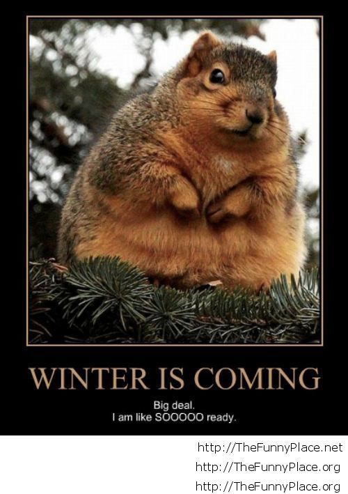 Winter is coming demotivational picture