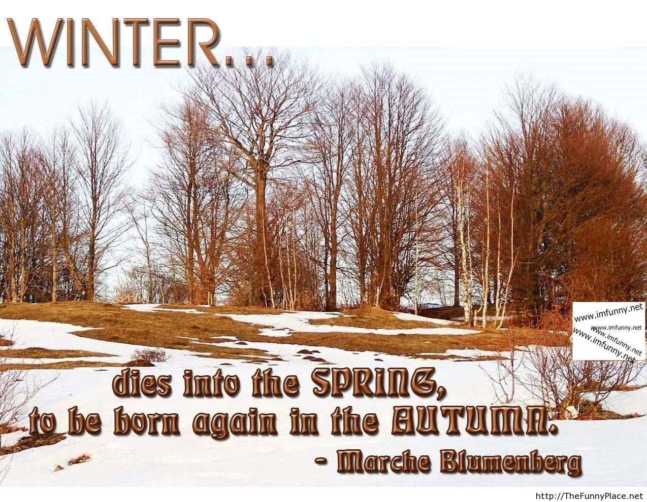 Winter quotes with image