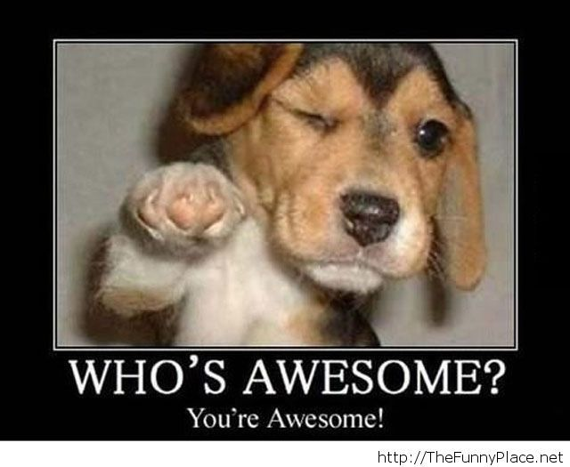 You are awesome wallpaper
