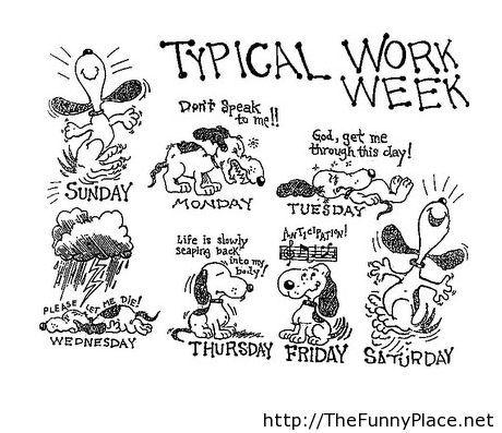 work week comics – TheFunnyPlace