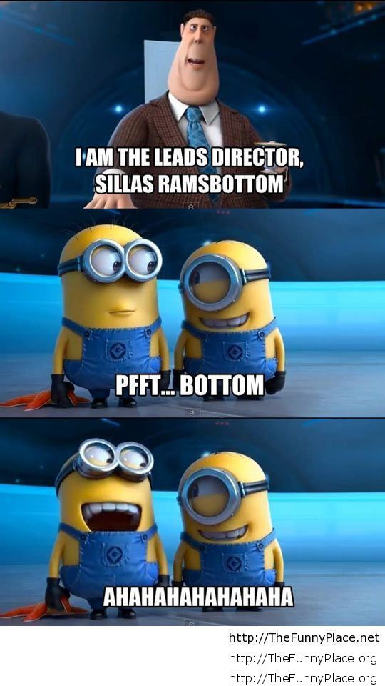 funny-minions-Despicable-Me-joke