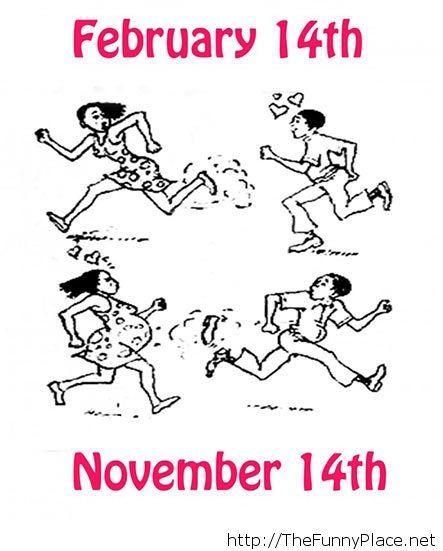 14th ferbruary vs 14th november