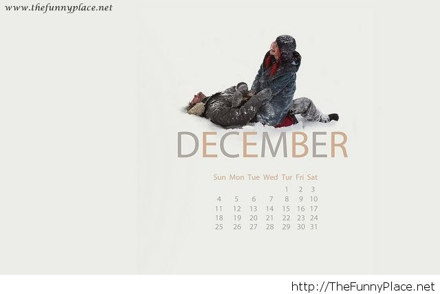 December 2013 calendar with a funny picture