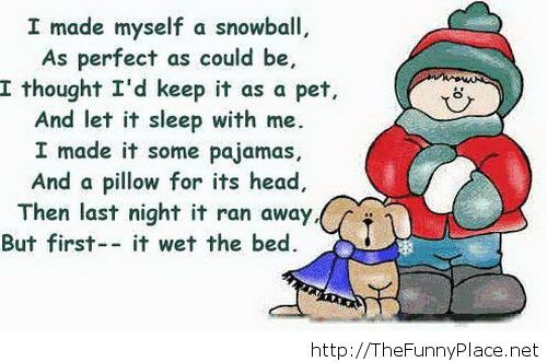 Funny winter 2013 saying