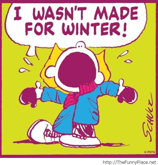 Funny winter quote