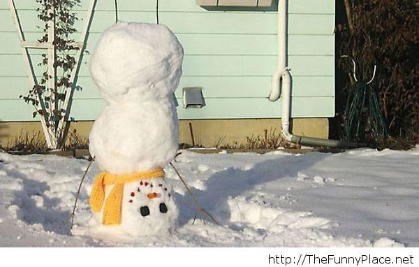Funny winter snowman picture