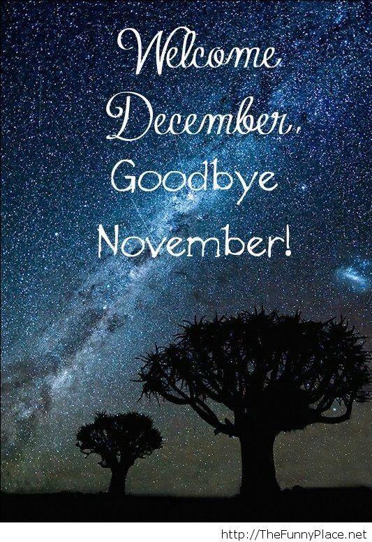 Goodbye november...