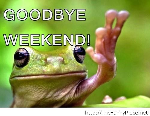 Goodbye weekend funny picture