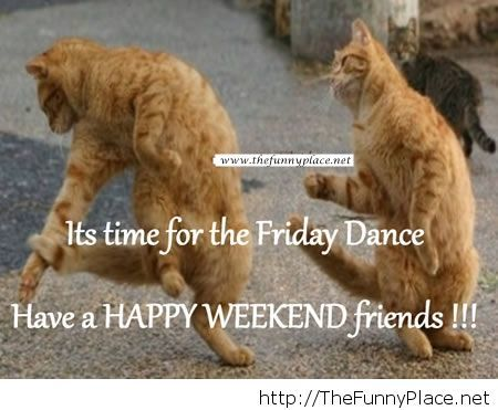 Happy weekend funny image