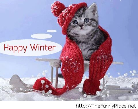 Happy winter funny picture