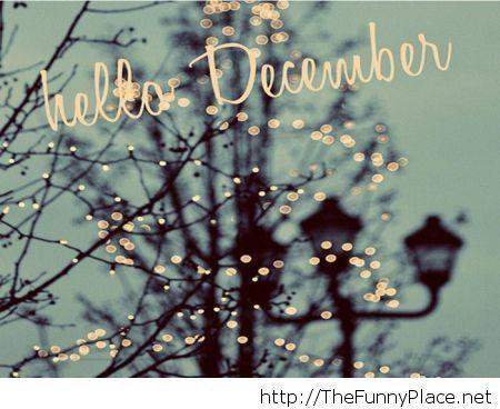 Hello december 2013