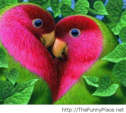 How love looks like
