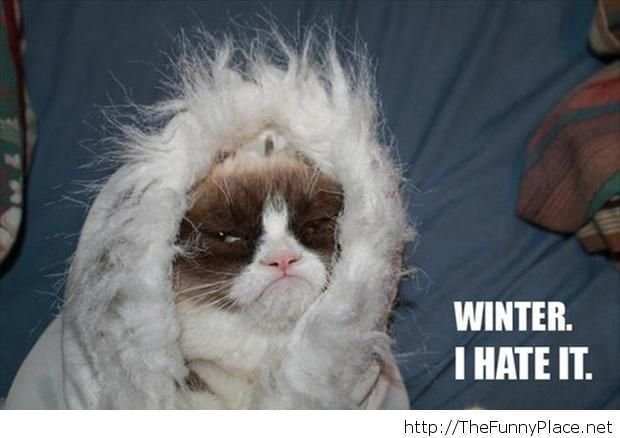 I hate winter Funny