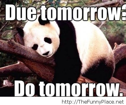 My essay, do it tomorrow!