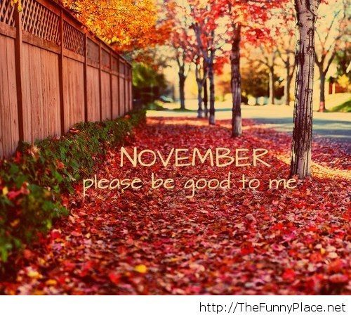 November the month of leaves