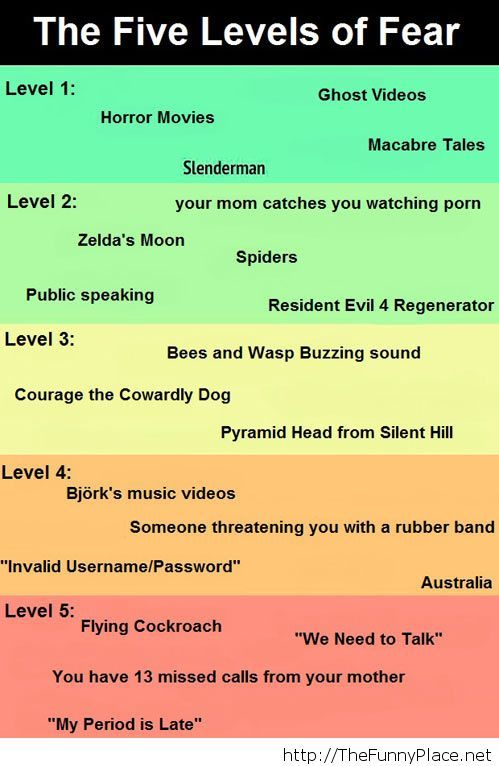 The levels of fear