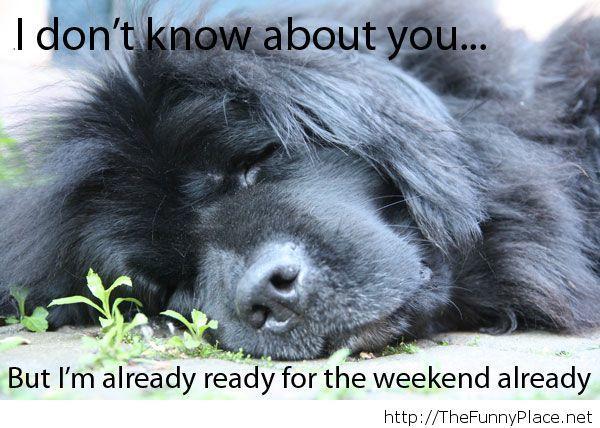 Weekend is here!