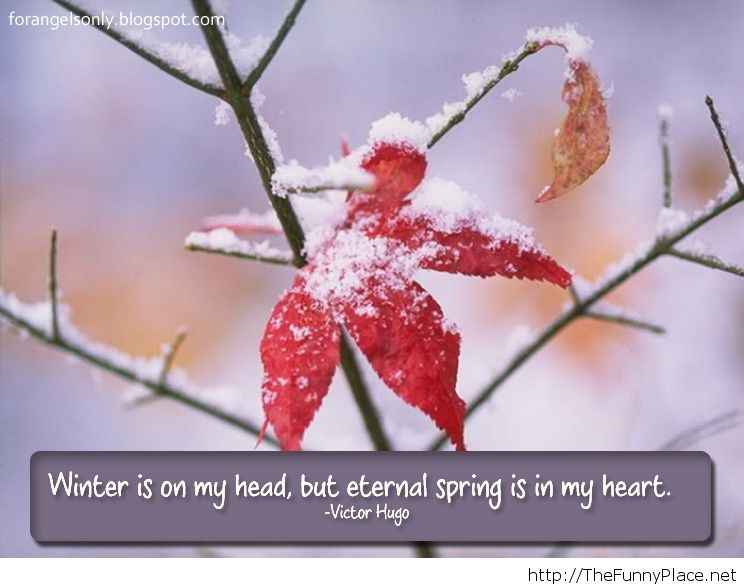 Winter quote 2013 2014