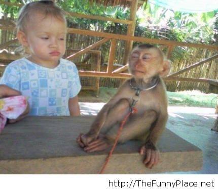 You thinking what I am thinking monkey