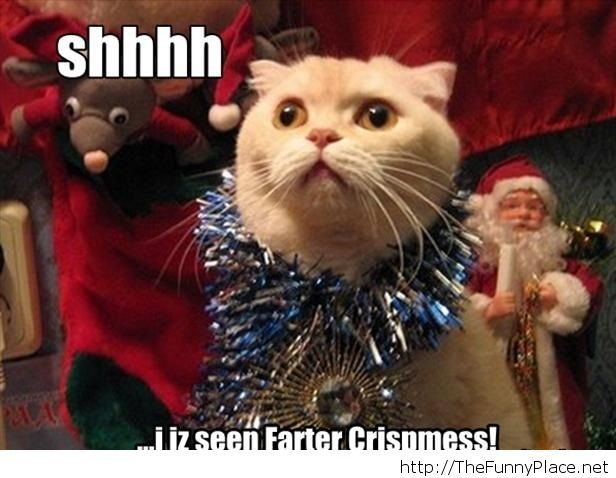 funny-christmas-pictures-5
