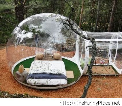 Awesome french hotel with bubble rooms