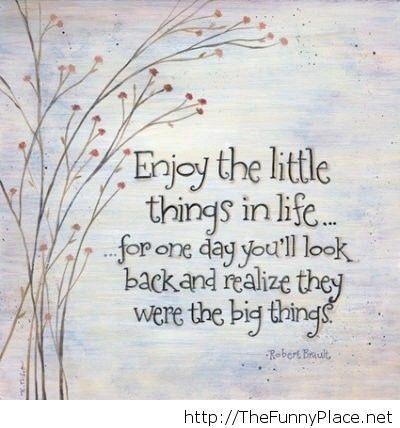 Enjoy life quote