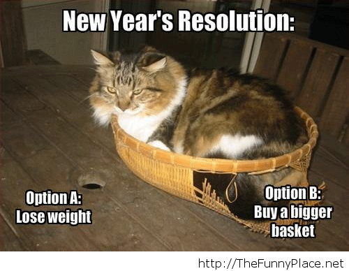 Fat cat new year resolution