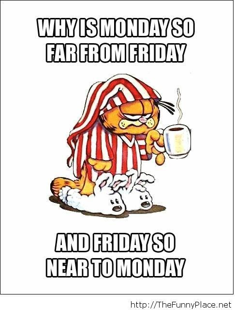 Friday is coming is near funny wallpaper