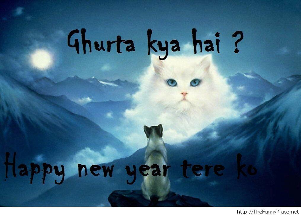 Funny 2014 Happy new year