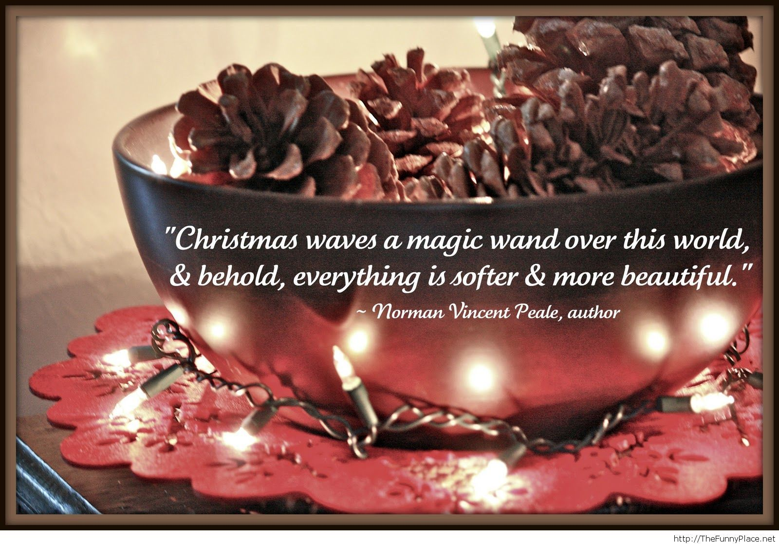 Funny christmas quote with image