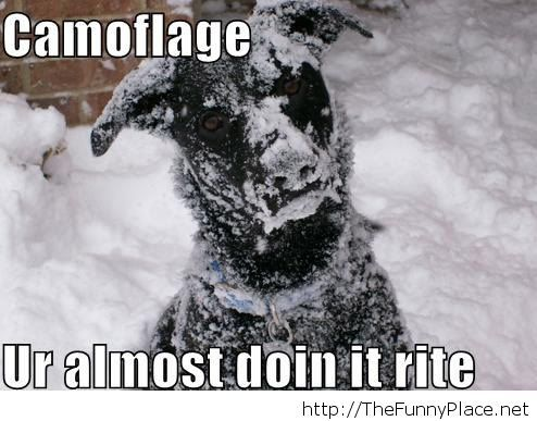 Funny winter camouflage