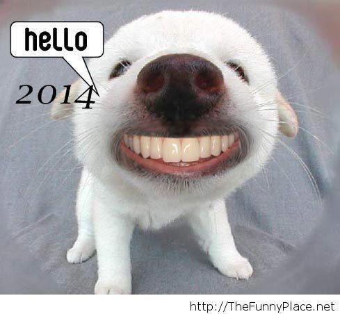 Happy Hello 2014
