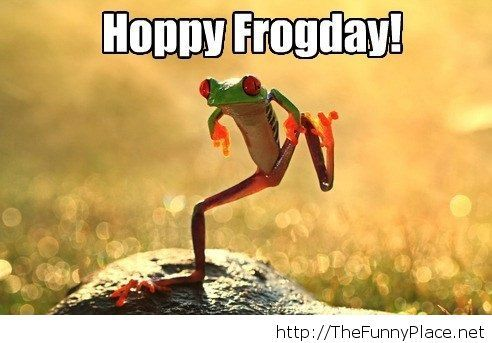 Happy friday image with a frog Funny