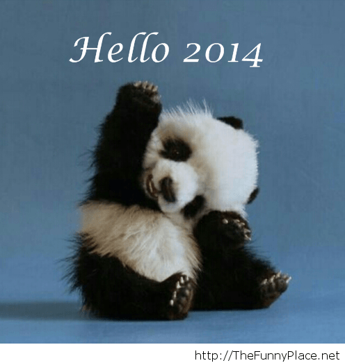 Hello 2014 funny picture