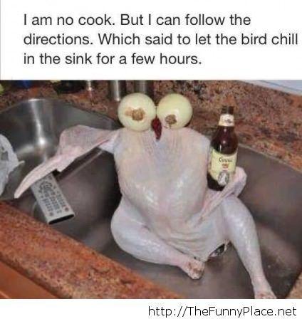 I am no cook