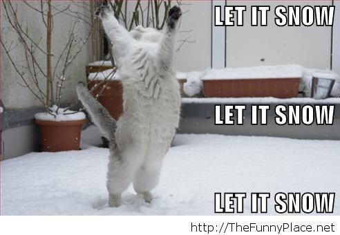 let it snow thefunnyplace