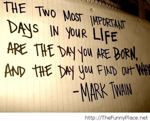 Mark Twain 2014 quote