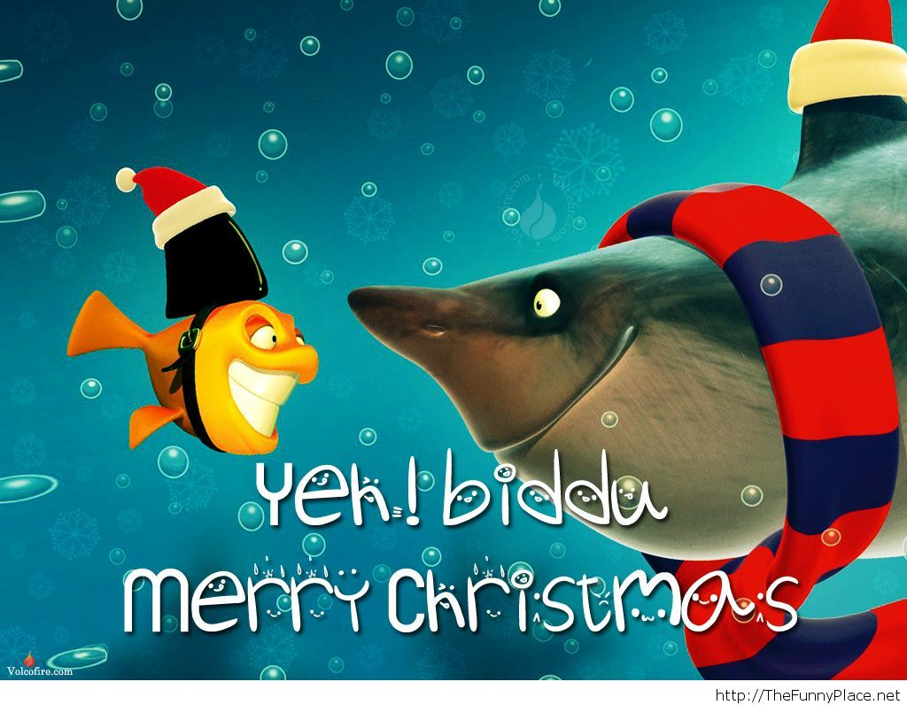 Merry-Christmas-2013-latest-funny-fishes-picture