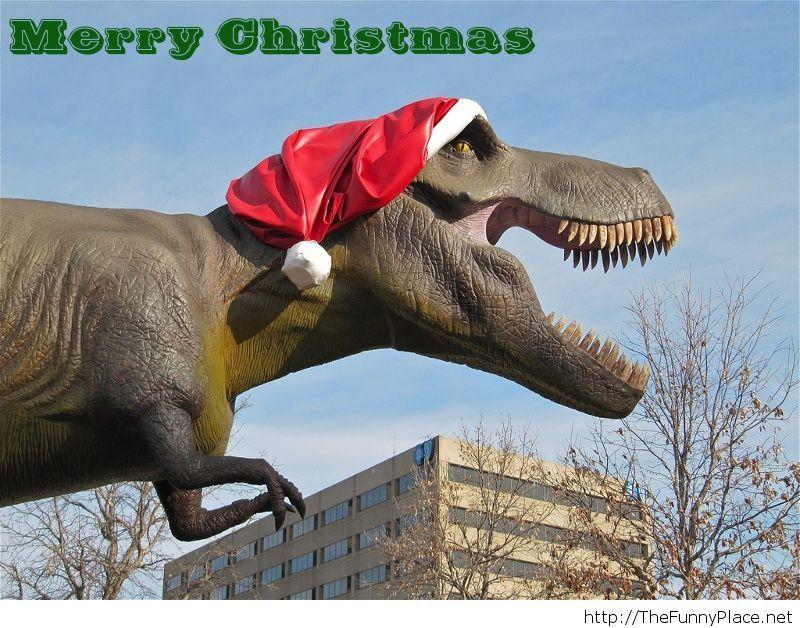 merry christmas funny - Merry Christmas Funny
