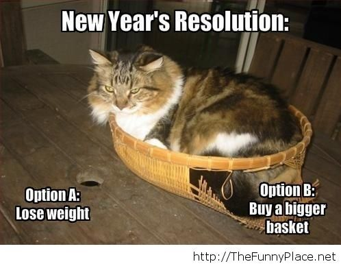 New Year resolution funny image