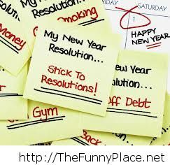 New year 2014 resolutions funny