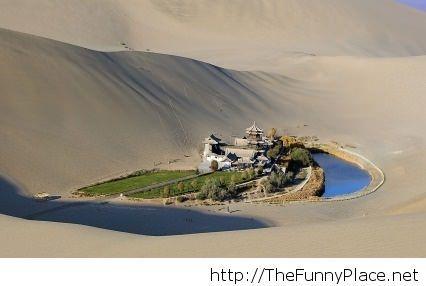 Oasis in the Gobi Desert